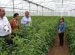 Facilita SAGARPA participación de pequeños y medianos productores con Reglas de Operación